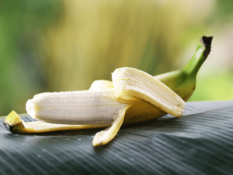 Kann man Mango-Schale essen? 7 Lebensmittel, deren Schale genießbar sind!
