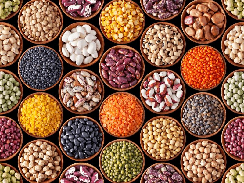Bioverfügbarkeit und wie du noch mehr Nährstoffe aufnehmen kannst
